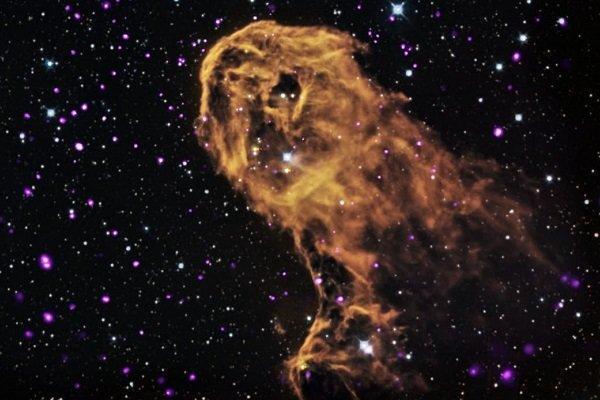 امکان فراوری دی ان ای در فضا وجود دارد