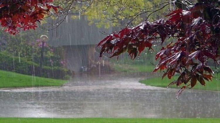 هواشناسی: بارش باران در بیشتر مناطق کشور، کاهش 5 تا 7 درجه ای دما