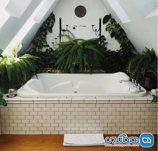 قدرت یک حمام معجزه آسا برای بازیابی انرژی از دست رفته شما